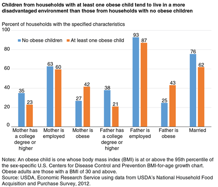A bar chart showing the share of obese-child and nonobese-child U.S. households with specified characteristics.