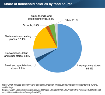 A pie chart showing the share of household calories by food source.