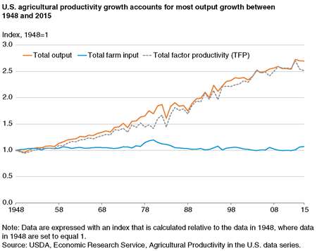 A chart showing historical trends in agricultural productivity, total farm output, and total farm input.