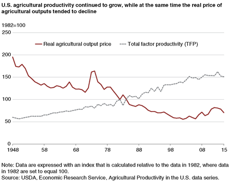 A chart comparing the historical growth in total factor productivity with the decline in real agricultural output prices.