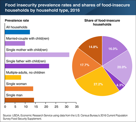 Multiple-adult households without children account for over a quarter of U.S. food-insecure households