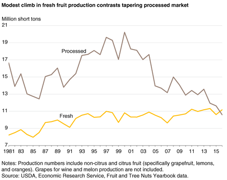 A line chart showing fresh fruit and processed fruit production from 1980 through 2016.