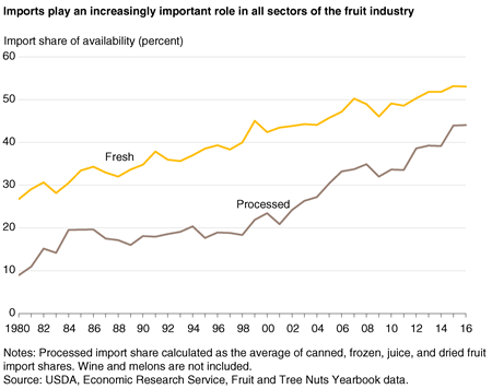 A line chart showing fresh fruit and processed fruit import shares from 1980 through 2016.