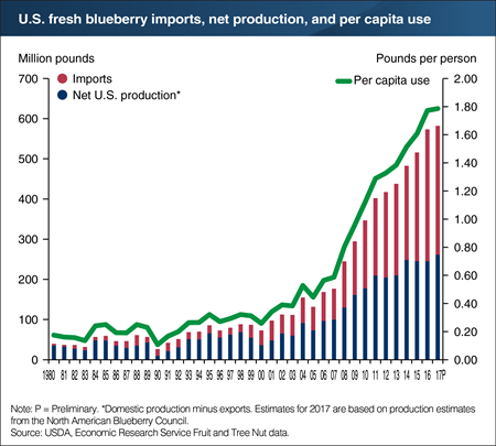 U.S. fresh blueberry demand continues to increase