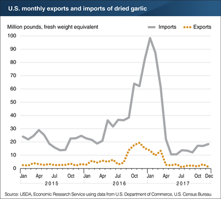 Monthly U.S. dried garlic trade spiked temporarily in 2016/17
