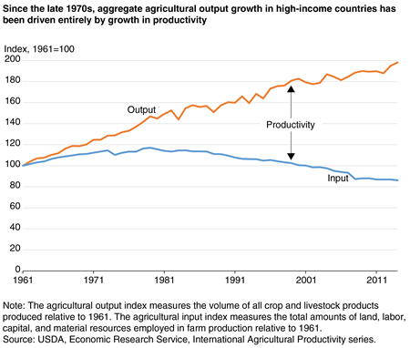 A chart shows that the growth in agricultural output in high-income countries since the late 1970s was driven entirely by the growth in agricultural productivity.