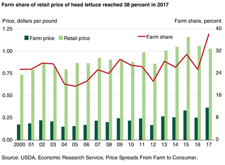 A combination bar and line chart showing the annual farm share and annual farm prices and retail prices per pound for head lettuce for 2000 to 2017