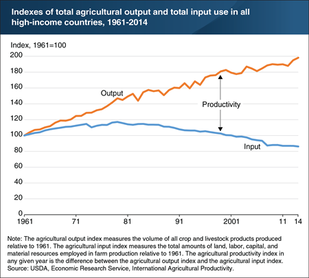 Since the late 1970s, agricultural productivity growth in high-income countries has raised output and reduced farm input use