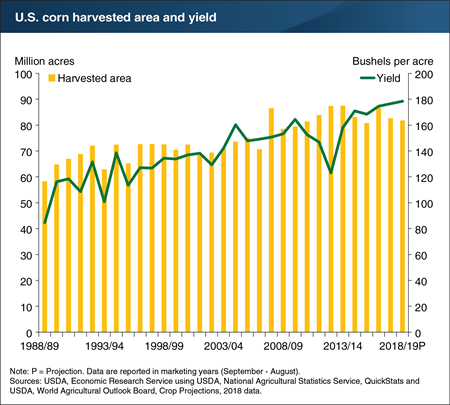 U.S. corn yield projections for 2018/19 suggest record yields on the way