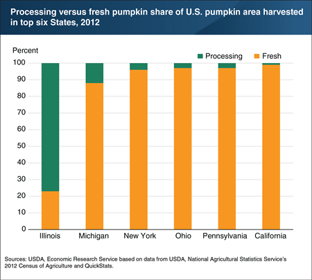 Illinois produces the largest share of processed pumpkin in the United States by a large margin