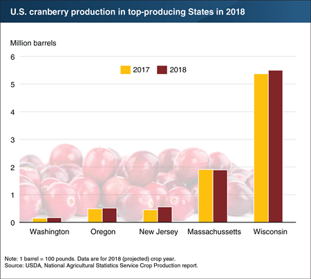 Cranberry production is up in 2018, just in time for the holidays