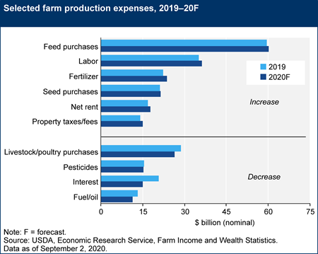 Selected farm production expenses, 2019–20F
