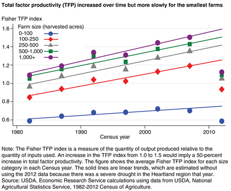 A chart shows that total factor productivity (TFP) increased over time but more slowly for the smallest farms in the Heartland region.