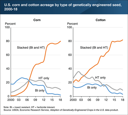 The share of corn and cotton acreage planted with genetically engineered stacked seeds has climbed since 2000