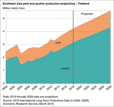 Area chart showing pork and poultry production projections in Thailand through 2028