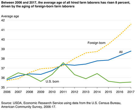 A chart shows that, between 2006 and 2017, the average age of all hired farm laborers rose 8 percent, driven by the aging of foreign-born farm laborers.