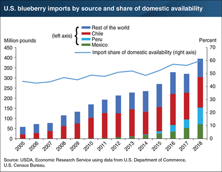 Imports from Latin America make up a growing share of U.S. blueberry consumption