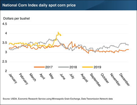 Corn prices rise sharply amidst crop progress and planting uncertainties