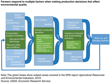 A flowchart shows how farmers respond to multiple factors when making production decisions that affect environmental quality.