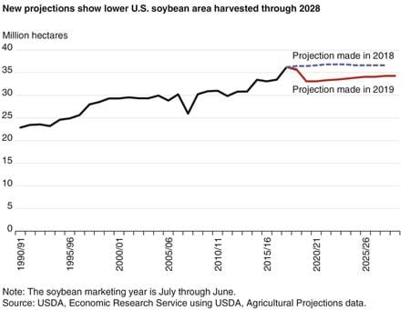 A line chart showing projected U.S. soybean area harvested through 202