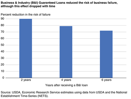 A bar chart shows that Business & Industry (B&I) Guaranteed Loans reduced the risk of business failure.