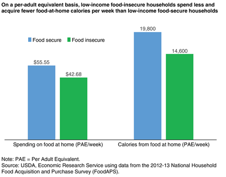 A bar chart showing spending on food at home and calories from food at home on a per adult equivalent basis for low-income food insecure households and low-income food secure households