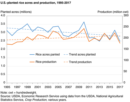 Line chart showing U.S.-planted rice acres and production, 1995-2017