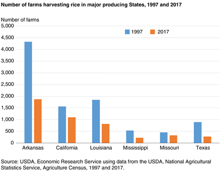 Bar chart showing the number of farms harvesting rice in major producing States, 1997 and 2017