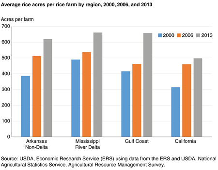 A bar chart showing the average rice acres per rice farm by region, 2000, 2006, and 2013