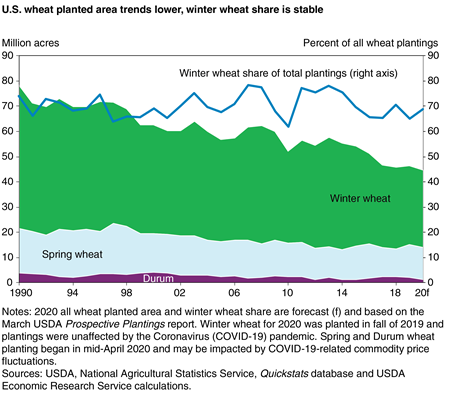 A stacked area chart indicating U.S. wheat planted area by wheat class from 1990 through 2020, and that while overall trends by class have decreased, winter wheat's share of the total is stable.