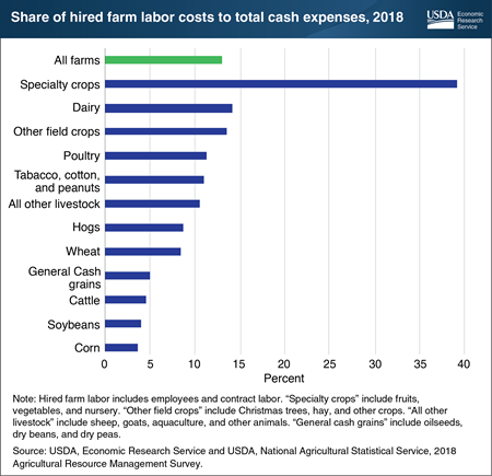 Labor costs on specialty crop farms accounted for 3 times as much of their total cash expenses as the average for all U.S. farms