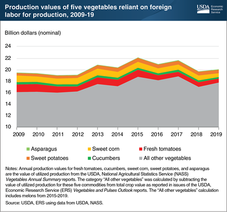 The production of five popular vegetables relies on foreign labor