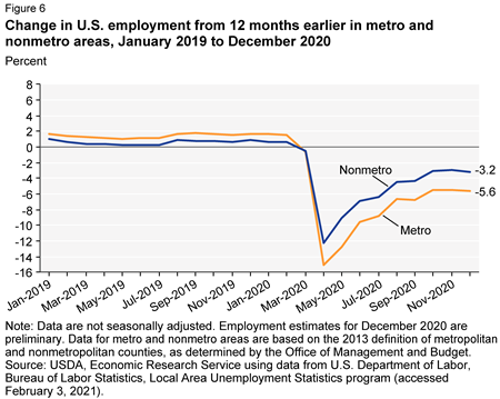 Change in U.S. employment from 12 months earlier in metro and nonmetro areas, January 2019 to December 2020