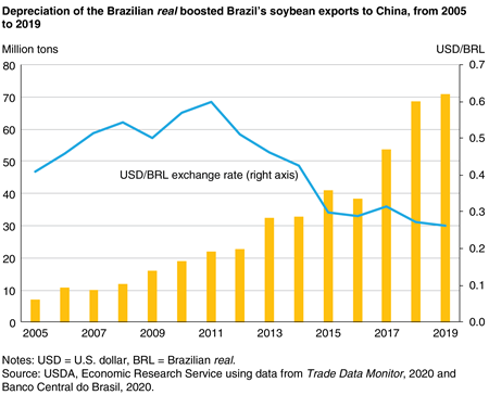 A bar graph of Brazil's soybean exports from 2005-19 increasing slowly but picking up in 2013 as the overlaid line graph of the Brazilian real/U.S. dollar exchange rate indicated depreciation of the real beginning in 2012.