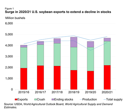 Surge in 2020/21 U.S. soybean exports to extend a decline in stocks
