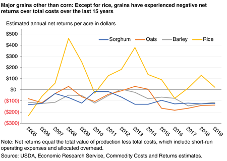 A line graph that shows estimated annual net returns for major grains other than corn, indicating that grains other than rice have experienced negative net returns over total costs during the last 15 years.