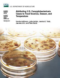 This is the cover of the Attributing U.S. Campylobacteriosis Cases to Food Sources, Season, and Temperature report.