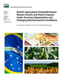 Brazil's Agricultural Competitiveness: Recent Growth and Future Impacts Cover