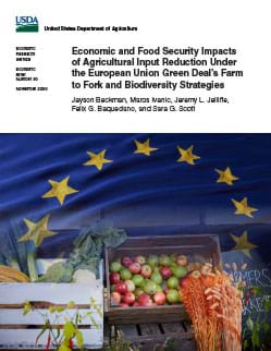 Cover of the Economic and Food Security Impacts of Agricultural Input Reduction Under the European Union Green Deal's Farm to Fork and Biodiversity Strategies report.